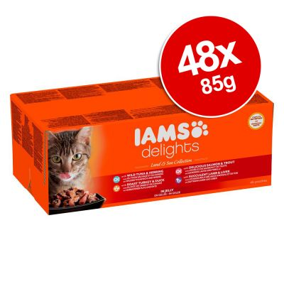 Iams Can Dog Food Review