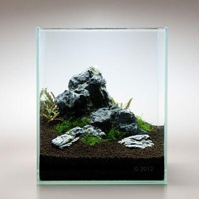 Mini landscape seiryu rock free p p on orders 29 at for Landscaping rocks for aquarium