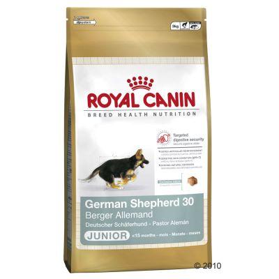 royal canin diabetic dog food feeding guide