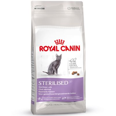 Can I Feed My Dog Dry Cat Food